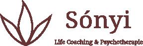 logo-sonyi